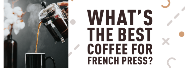 Best Coffee for French Press? [10 Top Picks] – [2019 Reviews]