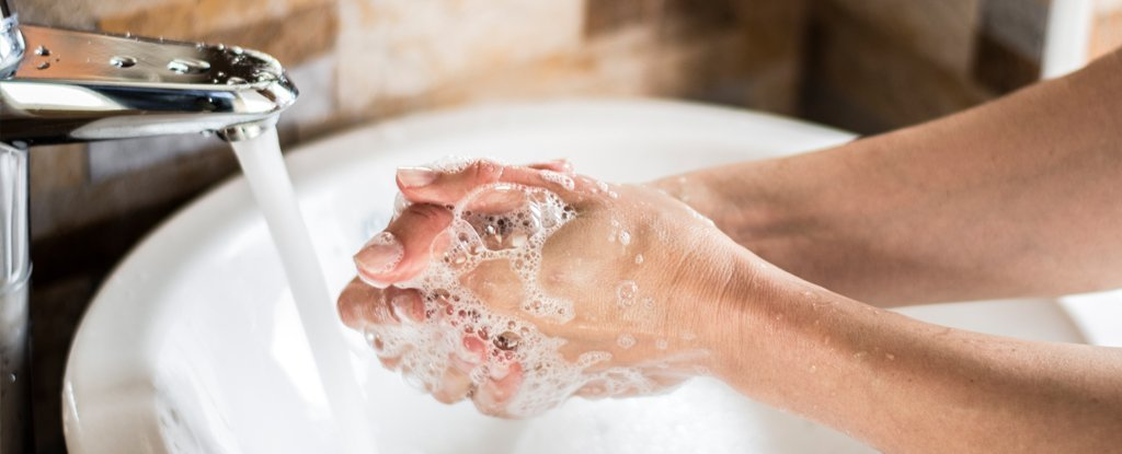 How To Clean Your Hands After Touching Feces