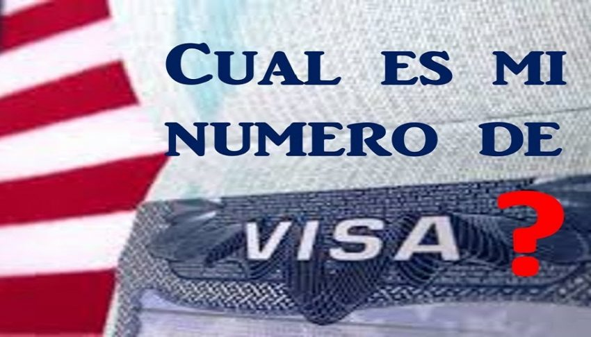 ¿Cuál es mi número de visa?