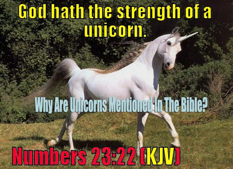Why are unicorns mentioned in the Bible?